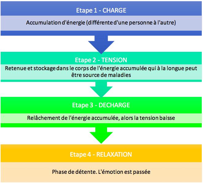 Les 4 étapes d'une émotion